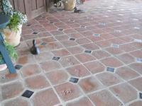 Dog Prints in 8' x 8' Handmade Brick Pavers